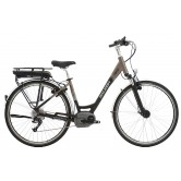 Raleigh Motus Hub Low Step Electric Bike - Bronze